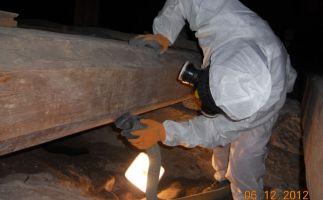 Absaugen der PAK belasteten Stäube mit Industriesauger