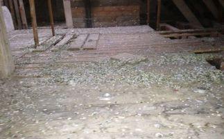 Belasteter Dachboden vor der Sanierung