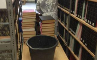 Feinreinigung Regale und Bücher